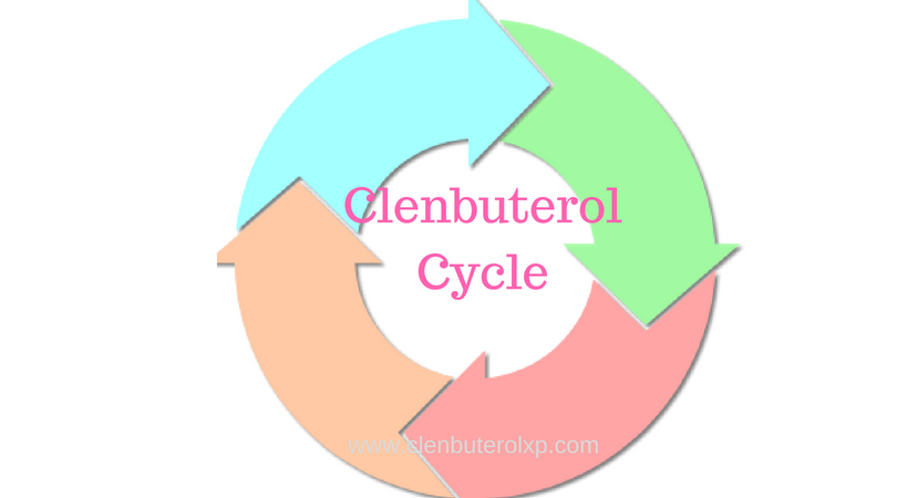Clenbuterol Cycle – How to use Clen to get maximum output